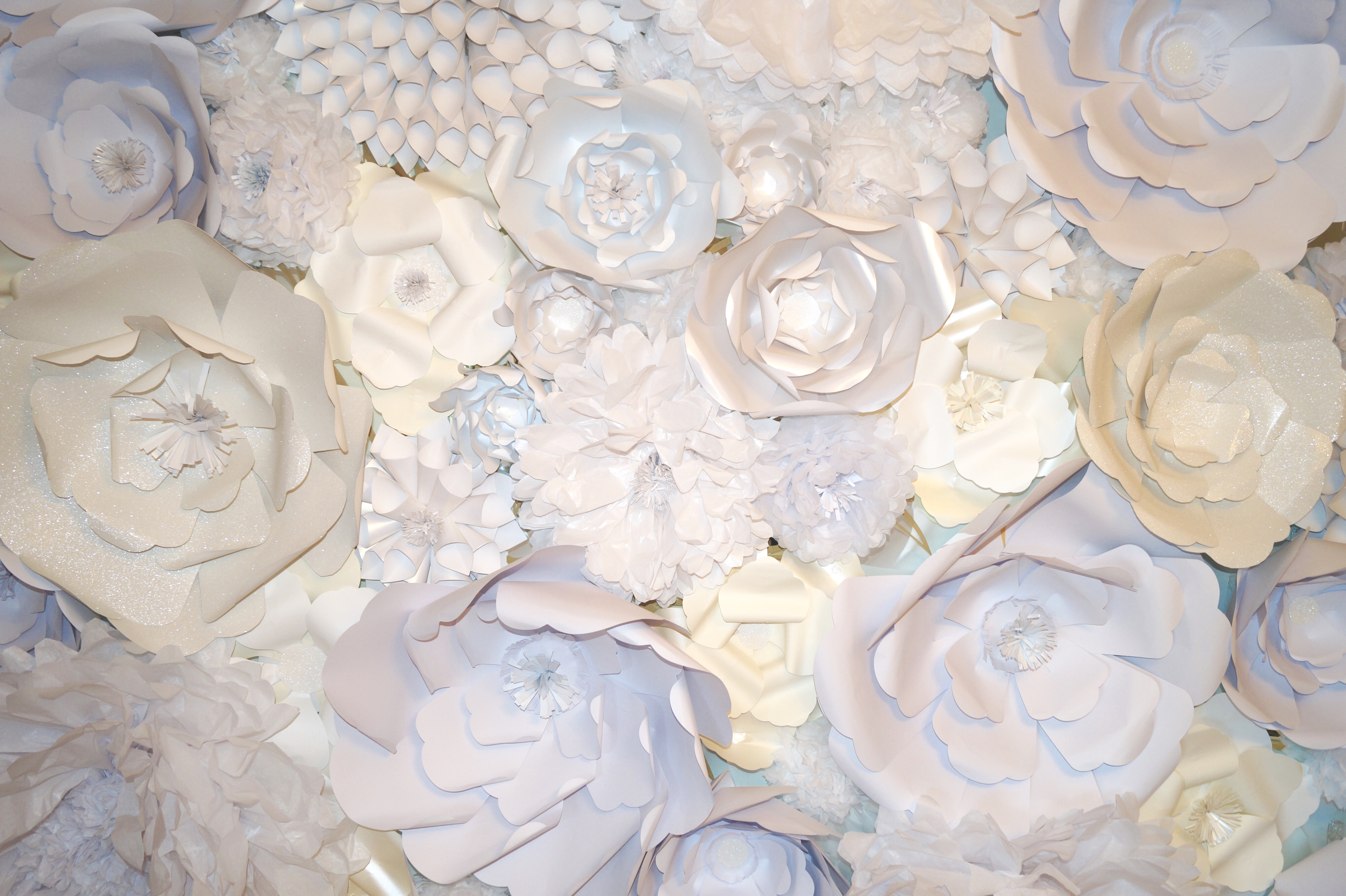 Mademoiselle meme s paper flower wall for Wall to wall paper